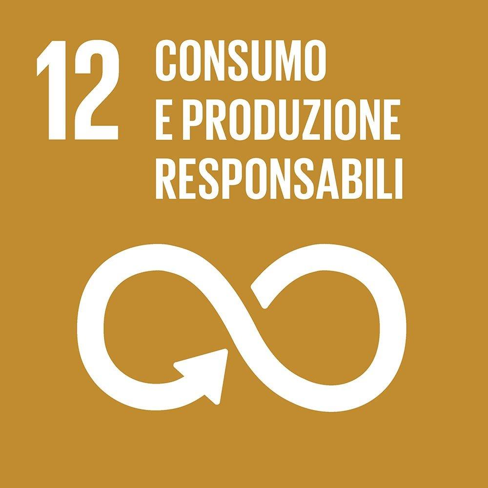 12-consumo-e-produzione-responsabile
