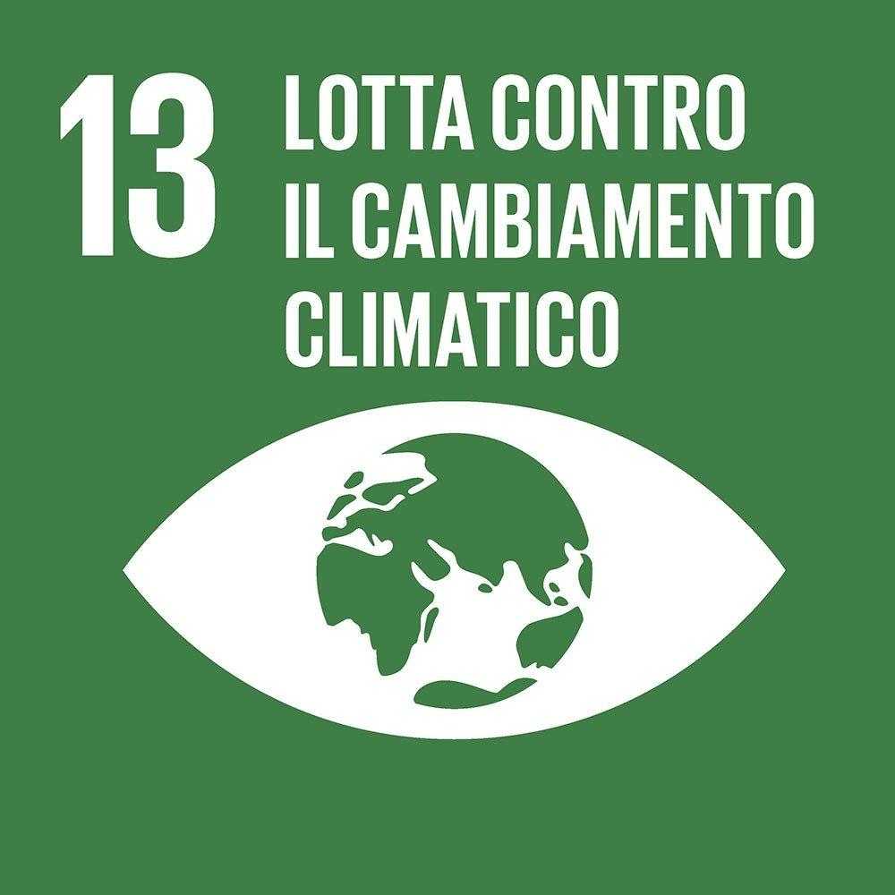 13-lotta-al-cambiamento-climatico