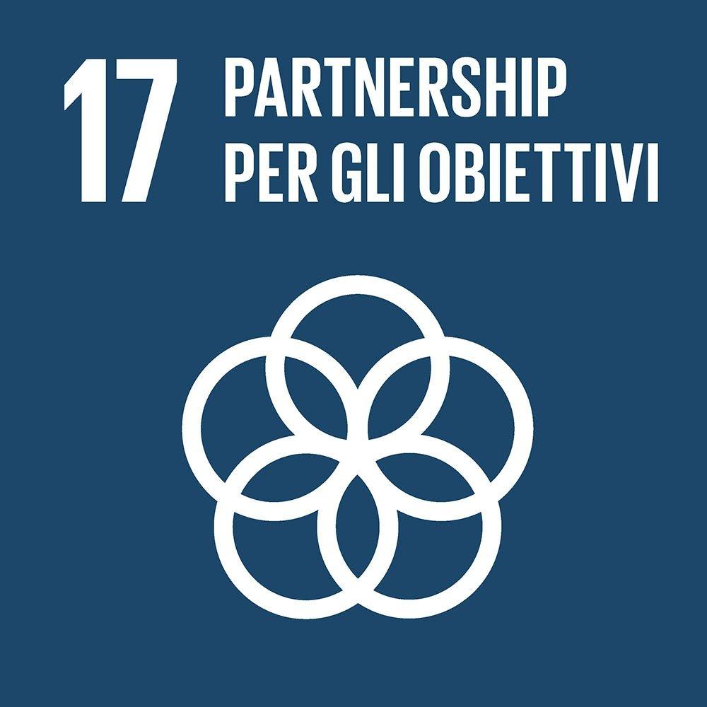 17-partnership-per-gli-obiettivi